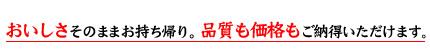 流行 GSX1300R ()SWAGE-LINE()SWAGE-LINE PRO(スウェッジラインプロ):ステンレスメッシュブレーキホース(トライピース) GSX1300R, Oリング総研:33676516 --- gr-electronic.cz